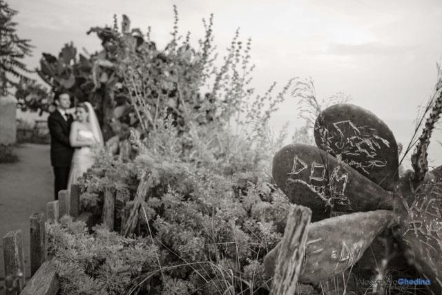foto di matrimonio con cactus e mare vicino a Tropea