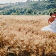 campo di grano al sole per dei bei ritratti di matrimonio